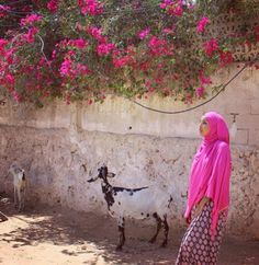 Woman in Somalia Turban, Islam Women, Somali, Girl Hijab, East Africa, Africa Travel, Cartoon Wallpaper, African Art, Good News