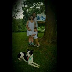 Gender Reveal Name reveal Family Dogs Border Collie Blue Boy