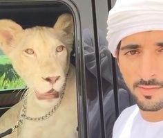 """فيديو ولي عهد دبي يأخذ لبؤته """"فروستي"""" بجولة في سيارته  #سيارات_المشاهير #تيربو_العرب #صور #فيديو #Photo #Video #Power #car #motor #Celebrities"""