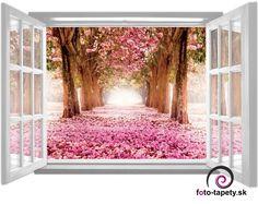 Fototapeta - FT0830 - Okno a stromy