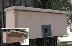 Winter Bird House (Roost) for wrens, chickadees, nuthatches, titmice, swallows, flycatchers and bluebirds.
