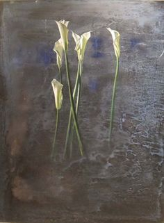 Calla Lillies Blue Background, Painting, Mario Madiai Calla Lillies, Blue Backgrounds, Glass Vase, Mario, Artist, Plants, Painting, Home Decor, Calla Lilies