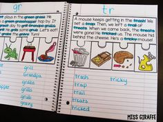 Miss Giraffe's Class: Phonics Fluency Notebooks