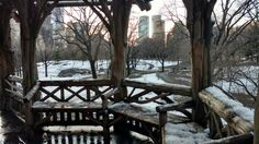 Central Park, New York en febrero