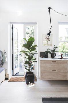 Cheap Home Decorating Sites Key: 8248841825 Bathroom Interior Design, Kitchen Interior, Boho Deco, Gravity Home, Green Rooms, Scandinavian Home, Unique Home Decor, Decoration, Home Renovation