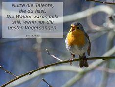 #Talente