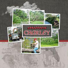 Hurricane Charley -- Designer Digitals