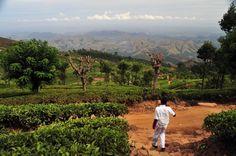 Haputale, Sri Lanka.