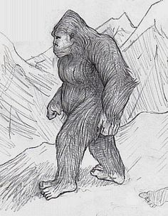 Why Would Government Officials Want to Keep Bigfoot/Sasquatch a Secret?