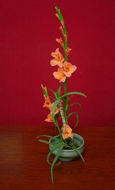 Ikebana di Lucio Farinelli