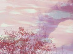 coscienzalfosforomistic pink