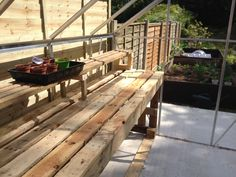Greenhouse staging made out of pallets.