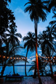 The Firefly in Bocas Del Toro, Panama - an eco-friendly Caribbean bed & breakfast on the water
