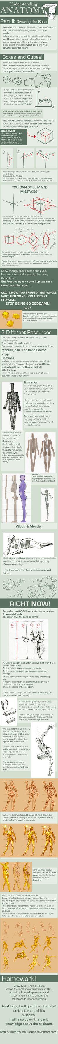 Understanding Anatomy Part II: Drawing the Base