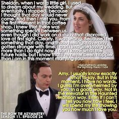 42 Ideas for wedding vows that make you cry funny haha – funny wedding ideas Big Bang Theory Quotes, Big Bang Theory Funny, The Big Theory, John Ross Bowie, Sheldon Amy, Wedding Vows That Make You Cry, Funny Wedding Vows, Film Manga, Dream About Me