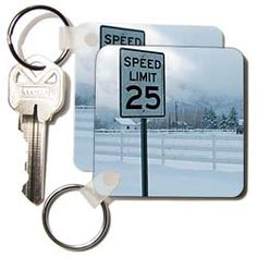 A speed limit sign that says 25  Key Chain