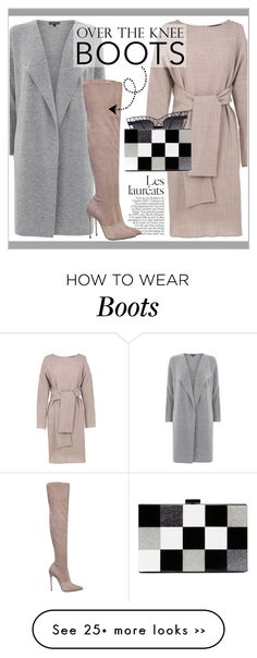 """""""Over-the-Knee Boots"""" by gooroo on Polyvore featuring TIBI, Warehouse, Le Silla and ALDO"""