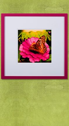 Straight from our Confetti Collection, this colorful photograph shines as it is encapsulated perfectly with one of our stylish frames and moulding designs. 🌺 ----------- #custom #framing #picture #frames #art #artwork #photos #floral #flowers Picture Frame Store, Picture Frames, Floral Flowers, Colorful Flowers, Wendy Davis, Moulding, Flower Frame, Old Photos, Custom Framing