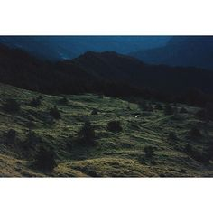【finalefinale】さんのInstagramをピンしています。 《喜歡在清晨的時候遙望這片山谷。 #VSCO #VSCOcam #valley #travel #vscotravel #vscotaiwan #ridge #ig_good #ig_mood #ig_taipei #ig_travel #hiking #尾根 #Taiwan #rueifang #nature #mountain #morning #稜線 #山 #iseetaiwan #森 #陽明山 #日出 #taipei #night》