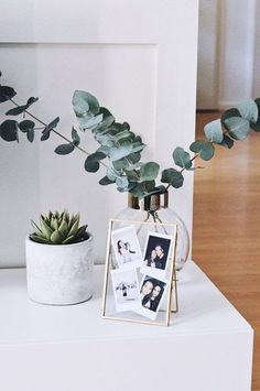succulents & eucalyptus – Home Decoraiton Sukkulenten & Eukalyptus – Image by Emma Tyler Home Design, Interior Design, Modern Design, Interior Office, Apartment Interior, Bathroom Interior, Design Ideas, Interior Livingroom, Bathroom Art