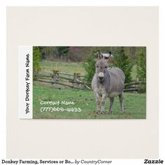 Donkey Farming, Services or Boarding Business Card