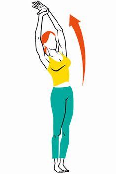 Dr. Oz's Morning Stretches for Flexibility and Strength - Oprah.com
