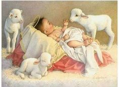 US Seller, Sweet Baby Jesus, Christmas Lambs Religious Diamond Painting Kit Full Drill. Fast S&H US Seller Sweet Baby Jesus Christmas Lambs Religious Diamond Painting Kit Full Drill. by OurCraftAddictions Christmas Jesus, Christmas Nativity Scene, Christmas Scenes, Christmas Baby, Christmas Pictures, Nativity Ornaments, Baby Jesus Pictures, Easter Pictures, Bible Pictures