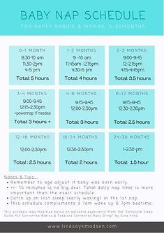 Cheat sheet for how much daily sleep (naps) baby needs, month by month.  Free printable available! Baby Sleep Routine, Baby Needs, Bedtime, Baby Shower Gifts, Free Printables, Baby Shower Favors
