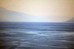 Moldefjorden by http://tonnyfroyen.com/  #naturephotography #Molde #scenery #natureshot #colors #Light #allposters #Ilovenature #landscape_lovers #BeautifulNature #Follow #sky #landscape_lovers #rbnett #lovenature #Beautiful #nature #pinterest #tumblr #twitter #flickr #Camera #world #naturephotography #night #natureonly #wanderlust #Followme #natureporn #natureonly