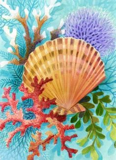 shells and plumería Johnny Karwan Nautical Prints, Nautical Art, Sea Life Art, Sea Art, Seashell Painting, Seashell Art, Underwater Painting, Coastal Art, Beach Crafts