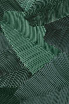 Collage Art, Collages, Motif Floral, Packaging Design Inspiration, Textures Patterns, Vector Art, Plant Leaves, Branding, Graphic Design