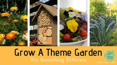 Grow A Theme Garden - Try Something Different - National Garden Bureau Natural Ecosystem, Growing Seeds, Garden Theme, Different Flowers, Try Something New, Edible Flowers, Amazing Gardens, Garden Plants, Gardening Tips