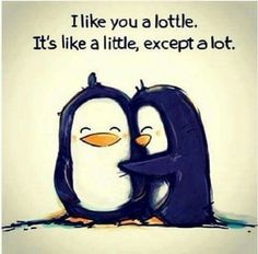cute quotes & We choose the most beautiful Cute Love Quotes For Your Crush - Wish I had the guts to say that!Cute Love Quotes For Your Crush - Wish I had the guts to say that! most beautiful quotes ideas Sweet Love Quotes, Love Quotes For Her, Love Is Sweet, Cute Quotes For Your Boyfriend, I Like You Quotes, Adorable Love Quotes, Cute Sayings, Corny Love Quotes, Sweet Friendship Quotes