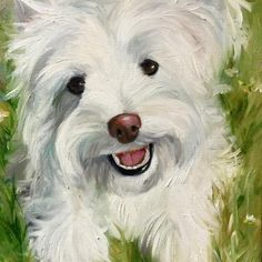 Mary Sparrow's portraits Dog Portraits, Horses, Dogs, Painting, Animals, Mary, Animales, Animaux, Pet Dogs