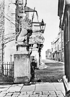 The Lions. Southampton England, Wallpaper Space, Historical Images, Old Pictures, Hampshire, History, Homeland, Architecture, Lions