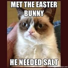 Grumpy Cat: met the Easter bunny. He needed salt.