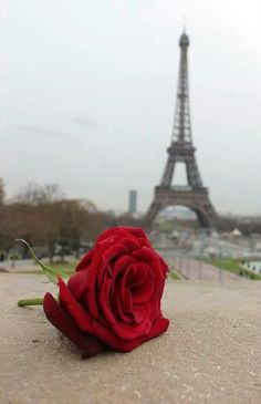 Love...In Paris