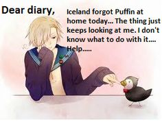 (I want to rp plssssssssssssss I'm so bored) *looks at Norway, then the puffin, then Norway again* What do we do with it?