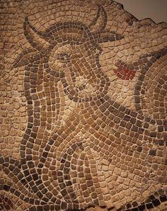 Ophiotaurus Mosaic