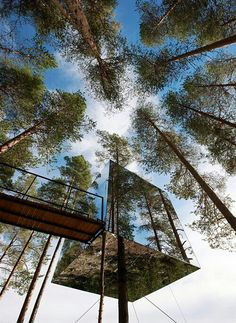 Mirrored tree house in Sweden