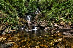 #tree #nature #water #ajpekfoto #nikon Nature Water, Nikon, Photography, Photograph, Fotografie, Photoshoot, Fotografia