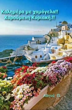 Good Morning Good Night, Wonderful Images, The Good Place, Cool Photos, Greece, In This Moment, Table Decorations, Mansions, Nice
