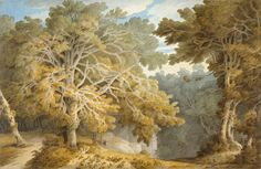 A View in Peamore Park, by Francis Towne