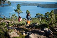 Like to hike? Then you should write down the High Coast on your list of places to visit in Sweden. It's a beautiful trail that should be on every hiker's bucket list. Train Ticket Booking, Beautiful Places To Visit, Places To See, Stockholm, Voyage Suede, Sweden Travel, Umea, Train Travel, Travel Destinations