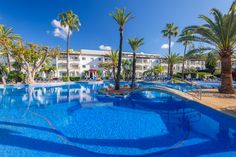 58 Ideas De Alcudia Garden Aparthotel Hotel Familiar Habitación Moderna Hotel