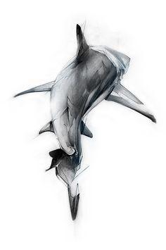 Sharks Thumb