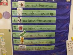Pocket Chart Idea What hatches from an egg?