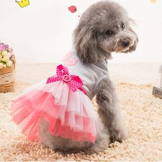 Quno Gauze Tutu Princess Dress Skirt cat Dog Cat Clothes >>> Find out more details by clicking the image (This is an amazon affiliate link. I may earn commission from it)