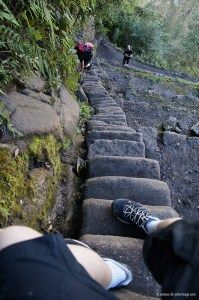 Me walking down the stairs of death from wayna picchu