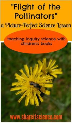 """Share it! Science News : """"Flight of the Pollinators"""" a Picture-Perfect Science Lesson. Great book series with lessons that connect science to picture books. Wonderful for science classrooms, homeschooling, library programs, afterschool programs and camps!"""